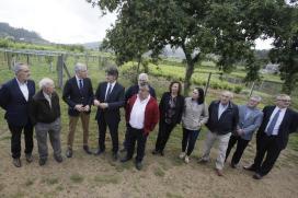 Conde aposta por unha industria galega do viño que combine calidade con tradición e innovación para seguir medrando