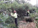 A Xunta executa actuacións de conservación e limpeza no río Barcés ao seu paso polo Concello de Abegondo