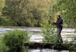 O tramo internacional do río Miño estreará novas medidas de xestión fluvial durante a próxima tempada de pesca