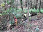 A Xunta executa actuacións de conservación e limpeza no treito interurbano do rego dos Muíños, no concello de Miño