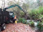 A Xunta executa actuacións de conservación e limpeza nos treitos interurbanos do río Mero no concello de Cambre